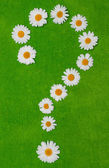 Daisywheels on question mark — Stock Photo