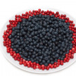 Stock Photo: Whortleberry and cowberries