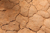 Dry crackinged land Thailand — Stock Photo