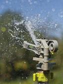 Sprinkler — Stock Photo