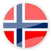 Norwegian round aqua button — Photo