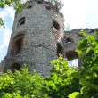 Stock Photo: Old ruined castle