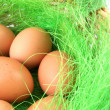 Stock Photo: Wicker basket with eggs