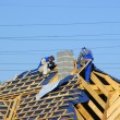 Stockfoto: Men on roof