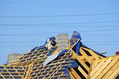 Adam çatıda — Stok fotoğraf