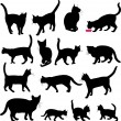 Vector de stock : Cats silhouettes