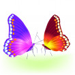 Royalty-Free Stock Vector Image: Vector butterfly