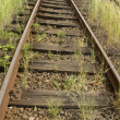 Rails — Stock Photo #2228916