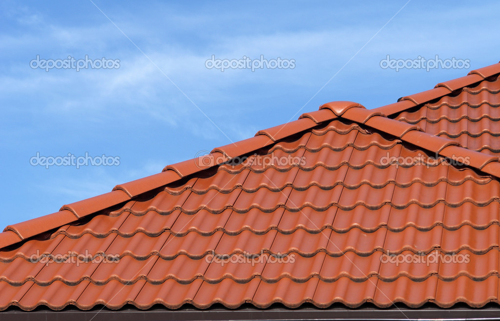 Roof against the sky  Stock Photo #2393338