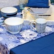 Blue tableware — Stock Photo