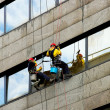 Stock Photo: Windows cleaners