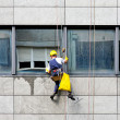 Stock Photo: Windows cleaner