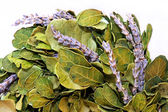 Lavendel krans — Stockfoto