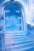 Frozen door — Stock Photo