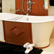 Stock Photo: Leather bathtub 2