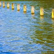 Stock Photo: Lake pillars