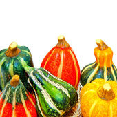 Gourds — Foto Stock