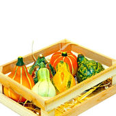 Gourds in crate — Stock Photo