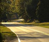 The Road — Стоковое фото