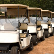 Royalty-Free Stock Photo: Golf Carts Ready