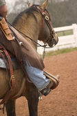 Cowboy Up — Stock Photo