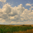 Agricultural plains — Foto Stock