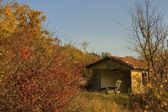 Ruined house in autumn forest — Stock Photo