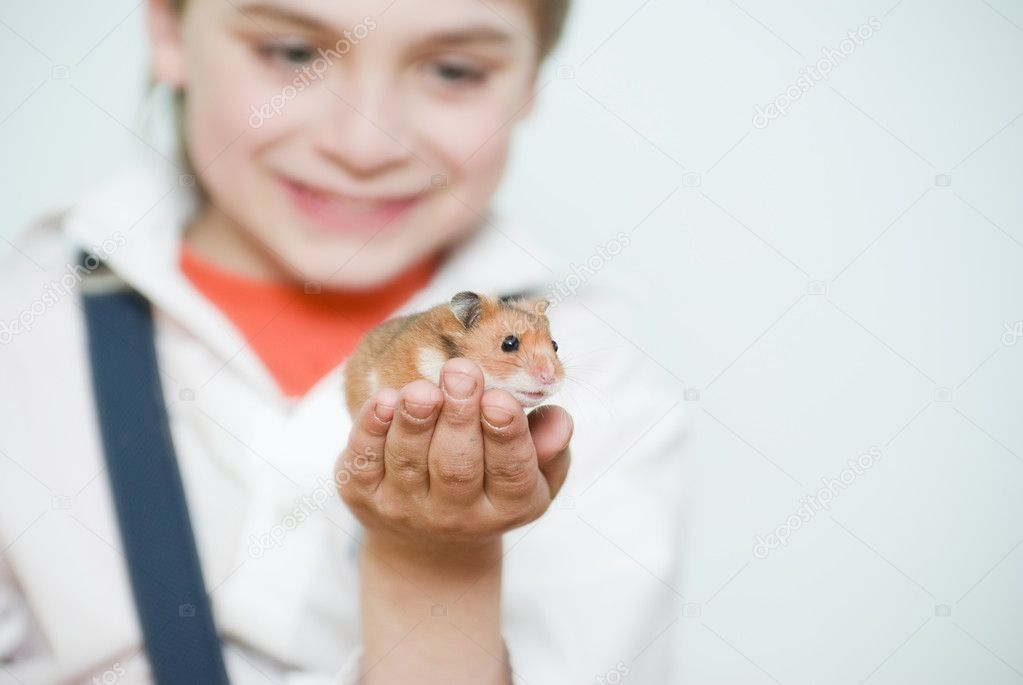 Boy with the syrian hamster — Stock Photo #2082534