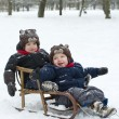 Twin brothers in sled — Stock Photo #2662660