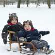 Twin brothers in the sled - Stock Photo