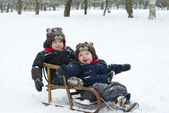 Twin brothers in the sled — Stock Photo