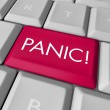 Panic Button on Computer Keyboard — Stock Photo #2039512