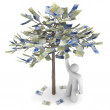 Money Growing on a Tree - Euros — Stock Photo