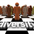 Diversity - Word and on Chessboard — Stock Photo