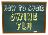 How to Avoid Swine Flu - Words on Chalkboard — Stock Photo