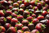 Strawberry Platter — Stock Photo