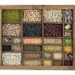 Variety of beans, grains and seeds - Stock Photo