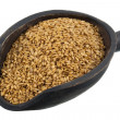 Scoop of golden flax seeds — Stock Photo