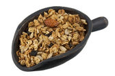 Scoop of granola with nuts, seeds — Stock Photo