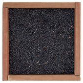 Chinese black forbidden rice — Stock Photo