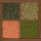 Mung bean and lentils — Stock Photo
