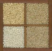 Quattro chicchi di riso in una scatola con divisori — Foto Stock