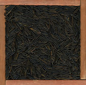 Wild rice background — Stock Photo