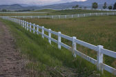 Dusk at pasture in Colorado foothills — Foto de Stock