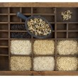 Rice grains in vintage wooden drawer — Stock Photo #2062051