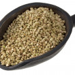 Scoop of buckwheat groats — Stock Photo