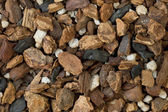 Orchid bark mix — Stock Photo