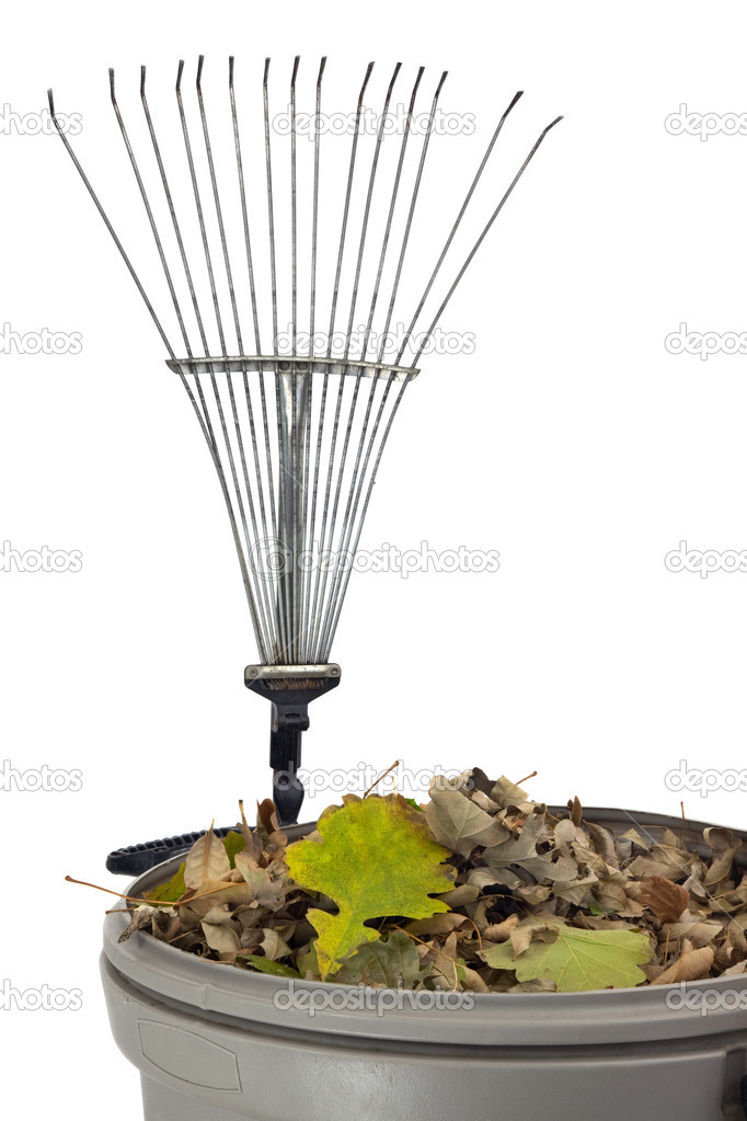 Plastic trash bin wtih dry leaves and rusty rake isolated on white - fall backyard work concept — Stock Photo #2061913