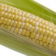 Corn on the cob macro — Stock Photo