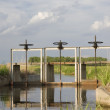 Stock Photo: Full of water irrigation ditch